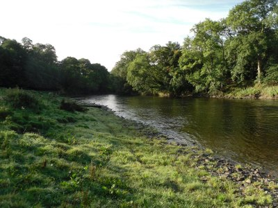 The Abernant beat of the upper Wye in low water.