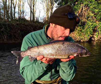 The specimen grayling from the Arrow, weighing in at just 1oz under the magical 3lb mark!