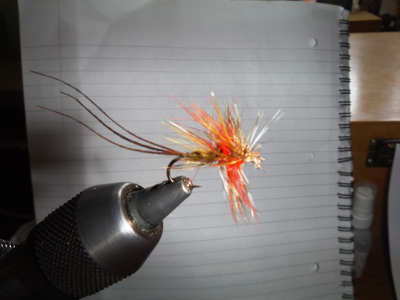 Hackle Mayfly