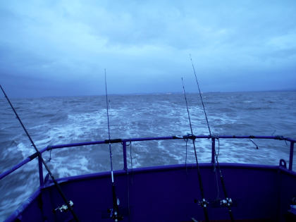 Motoring out into the Bristol Channel after winter cod (below).