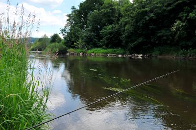Summer barbel fishing from the unspoilt banks of the river Wye