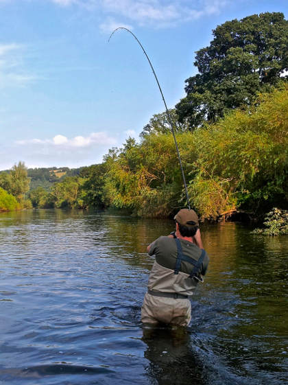 Putting on the waders and getting out beyond the willows is a great tactic when fishing beats like Sugwas Court