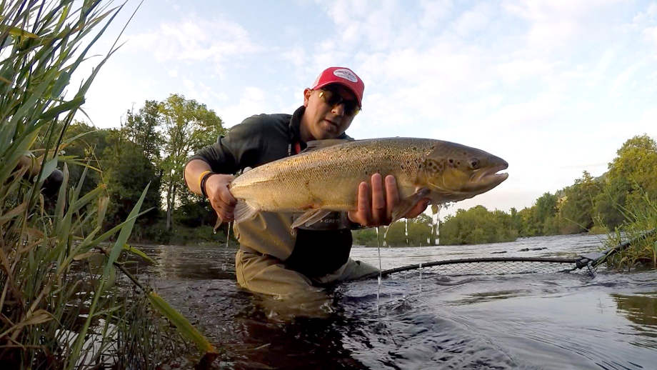 Airflo's Tim Hughes continued his impressive 2016 season on the Wye with this 8lb fish from the Rectory on the 22nd July