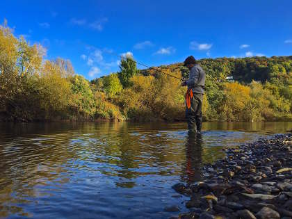 Trotting for chub on the Wye in October