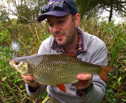 A specimen roach from the Itchen
