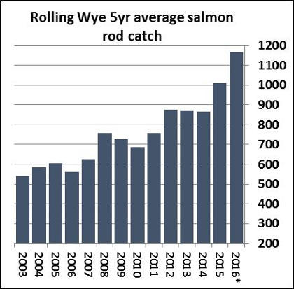 Rolling Wye 5yr average salmon rod catch