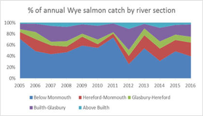 percentage of annual Wye salmon catch by river section