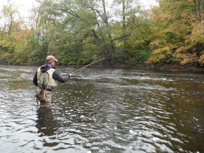 Dry fly fishing on the upper Wye in October