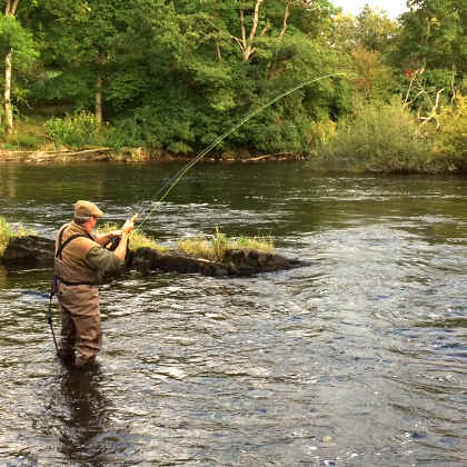 Robert Wheatcroft playing a 10lb salmon in the Mill Race of the Rectory on the 23rd September.