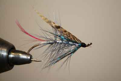 seatrout fly