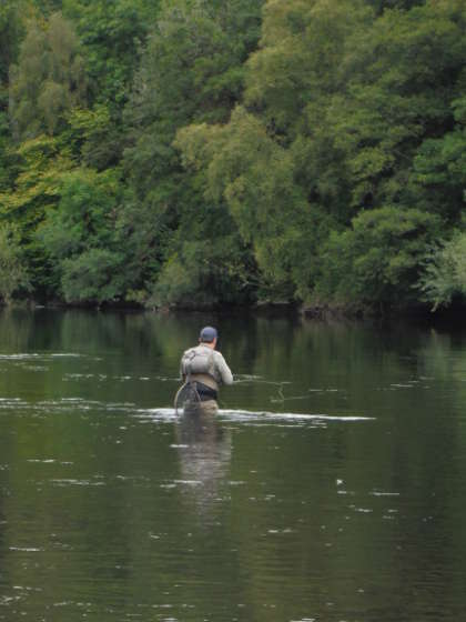 Dry fly fishing at Ty-Newydd