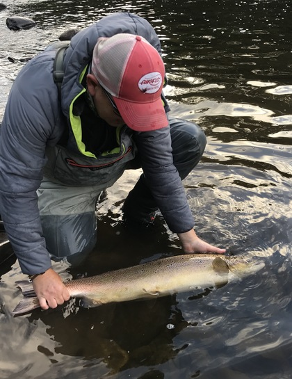 Tim Hughes releasing a 15lb July salmon from the same beat.