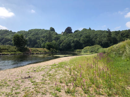The Wye at Goodrich at the end of July