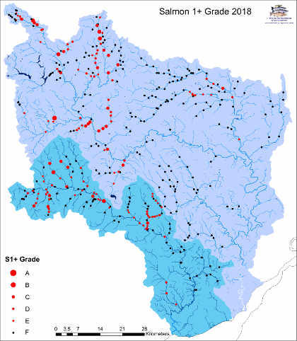 Combined WUF/NRW electrofishing results for salmon parr, Wye and Usk catchments.