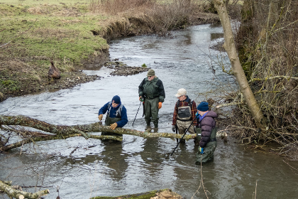 Wild Stream volunteers at work on the upper river Lugg.