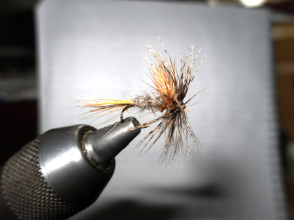 Dai Lewis's march brown pattern